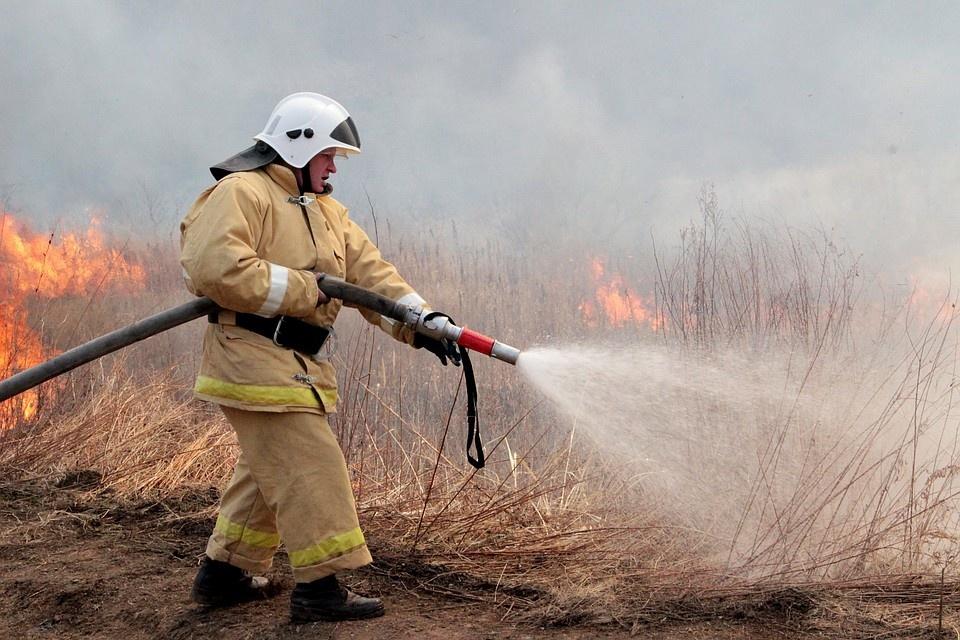 Пожарно-спасательные подразделения ликвидировали возгорание травы в Онежском районе Архангельской области.